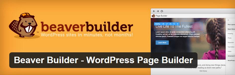 Beaver Builder Plugin Review