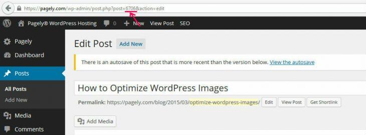 How to Find the Post ID in WordPress