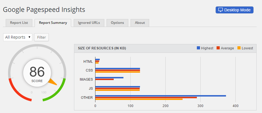 Google Pagespeed Insights Report Summary