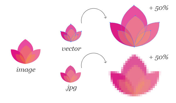 image-types