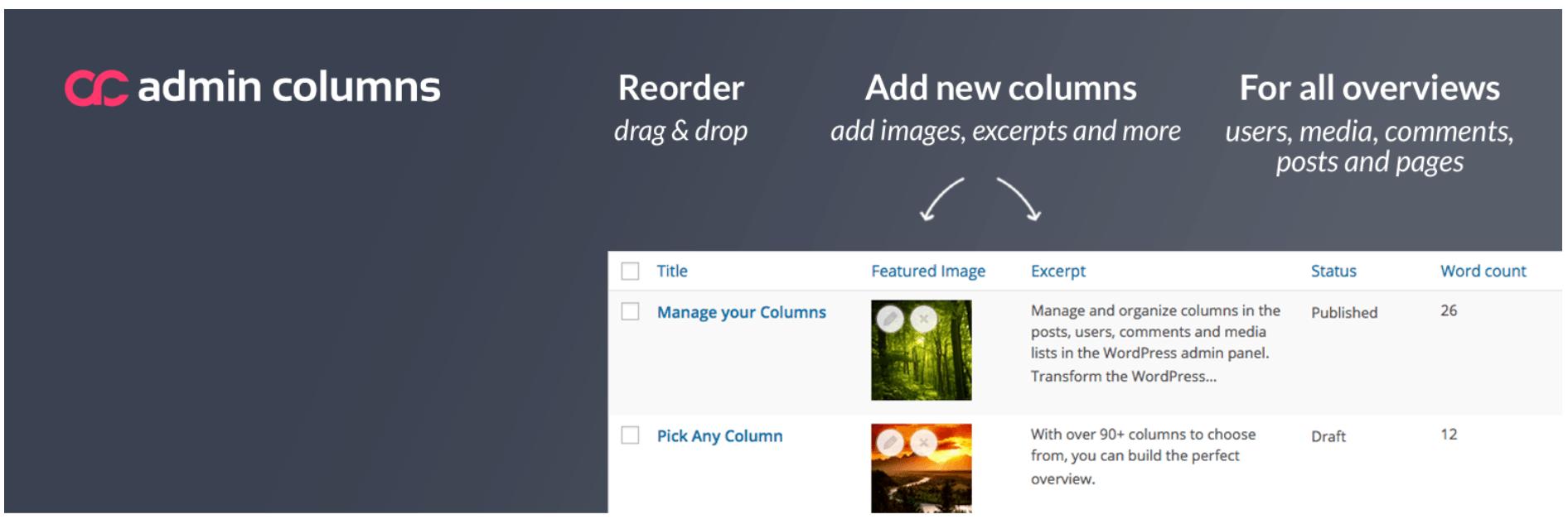 How to Create Columns in WordPress