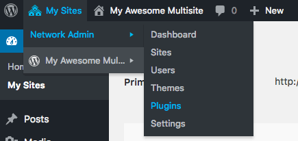 Accessing network-wide plugins in WordPress multisite.