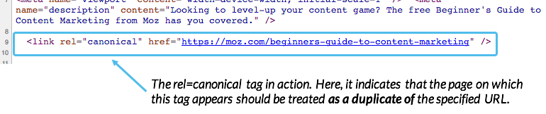 rel=canonical tag example